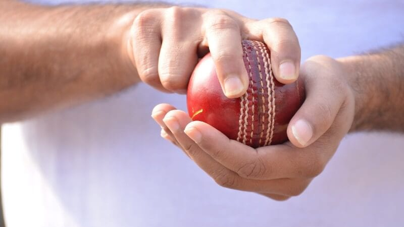 Cricket player holding ball
