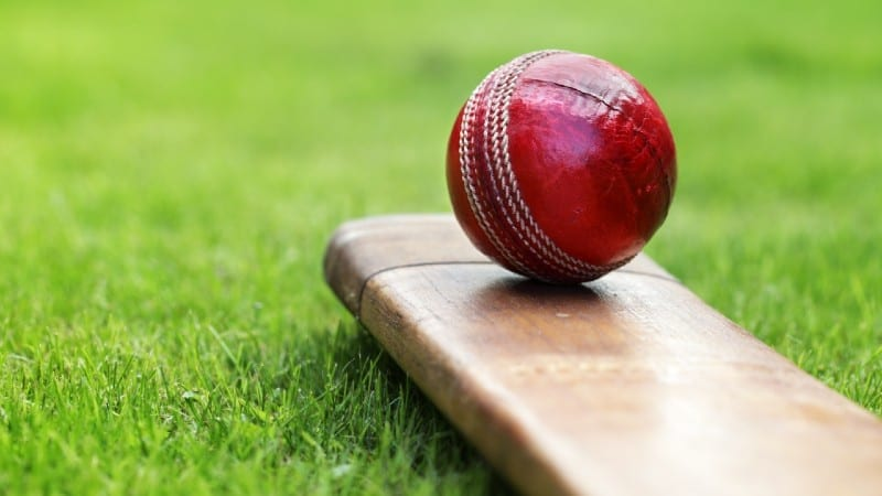 odds for cricket