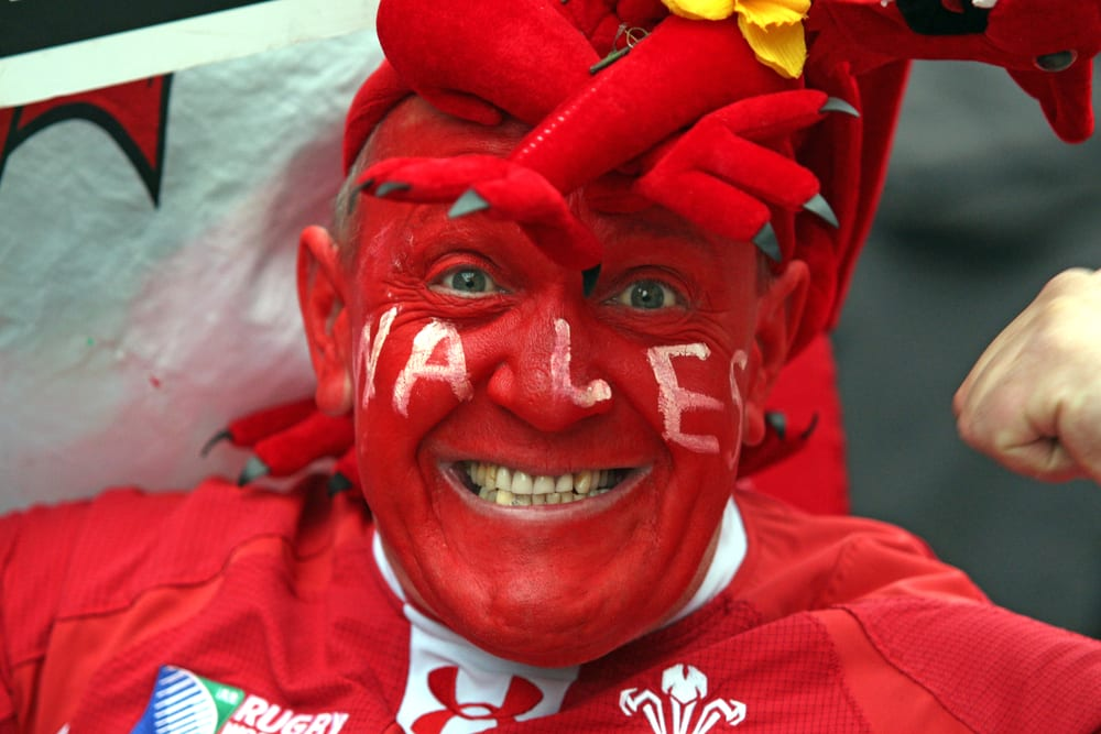 welsh rugby fan